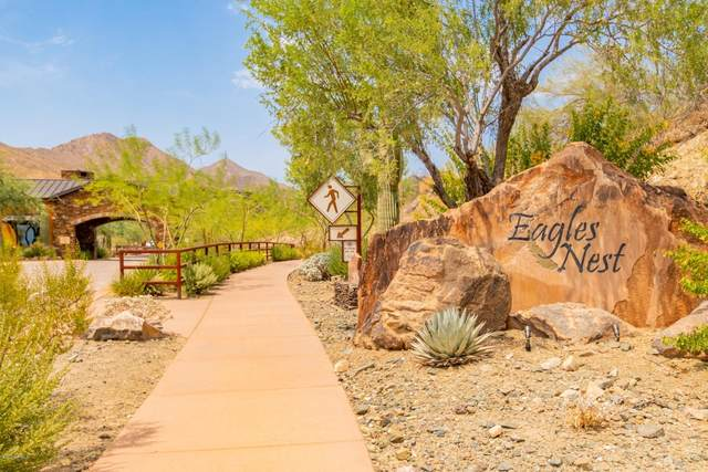 16856 N Mountain Parkway, Fountain Hills, AZ 85268 (MLS #6125975) :: Arizona 1 Real Estate Team