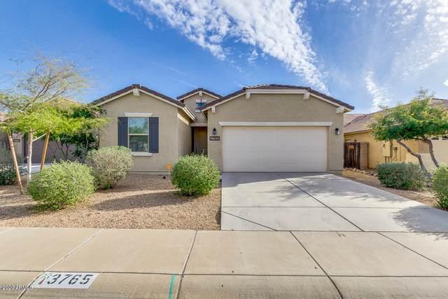 3765 E Alamo Street, San Tan Valley, AZ 85140 (#6126188) :: The Josh Berkley Team