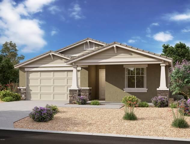 5529 W Stargazer Place, Laveen, AZ 85339 (MLS #6126236) :: Brett Tanner Home Selling Team