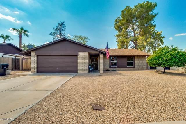 1351 W Plata Avenue, Mesa, AZ 85202 (MLS #6126274) :: The Daniel Montez Real Estate Group