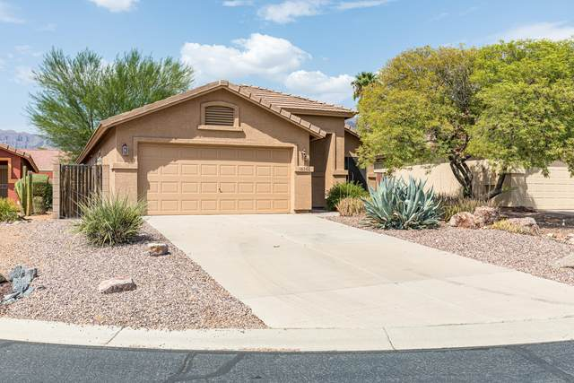 10306 E Rising Sun Place, Gold Canyon, AZ 85118 (MLS #6126516) :: The Results Group