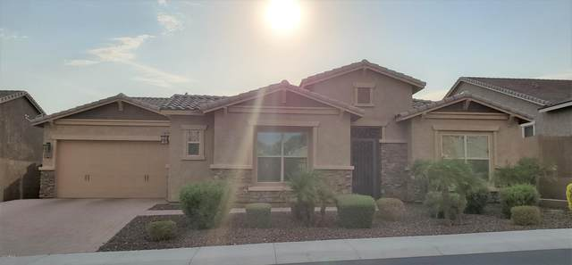 25438 N 102ND Drive, Peoria, AZ 85383 (MLS #6126528) :: Midland Real Estate Alliance