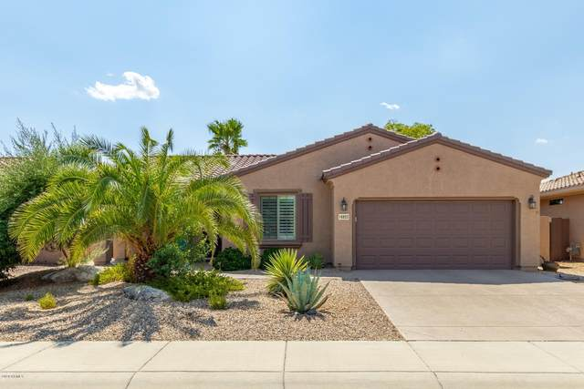 16853 W Cortaro Point Drive, Surprise, AZ 85387 (MLS #6126763) :: Arizona Home Group