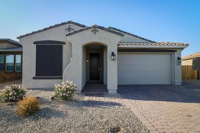 17252 W Williams Street, Goodyear, AZ 85338 (MLS #6126798) :: Klaus Team Real Estate Solutions