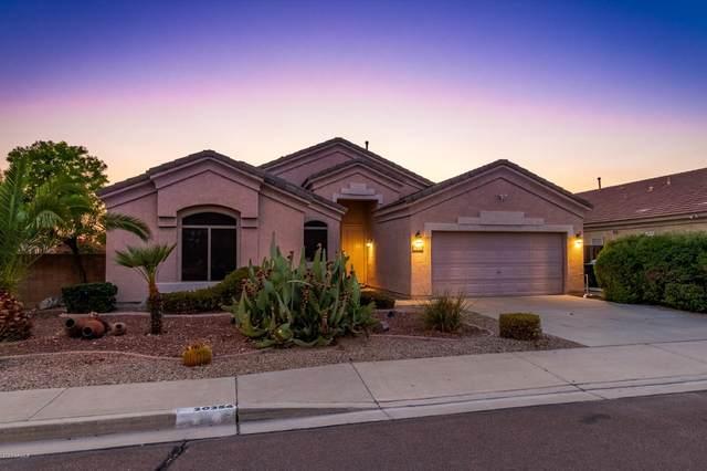 20256 N 92ND Lane, Peoria, AZ 85382 (MLS #6126872) :: Howe Realty