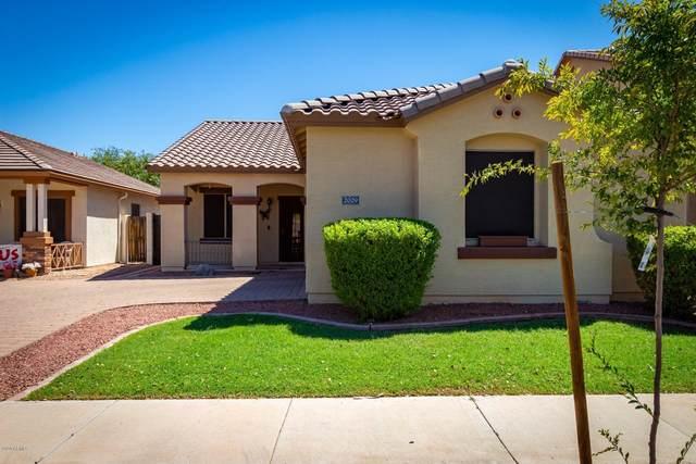2029 S Starling Drive, Gilbert, AZ 85295 (MLS #6126893) :: Selling AZ Homes Team