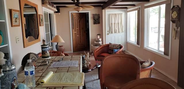 4224 E Sacaton Street, Phoenix, AZ 85044 (MLS #6126910) :: Lucido Agency