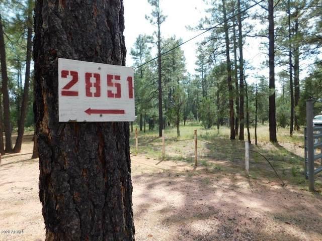 2851 Little Hawk Trail, Overgaard, AZ 85933 (MLS #6126942) :: Kepple Real Estate Group