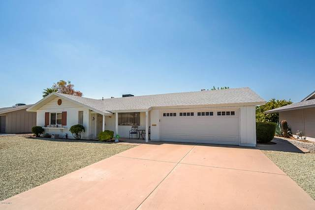 10221 W Pinehurst Drive, Sun City, AZ 85351 (MLS #6126978) :: Homehelper Consultants