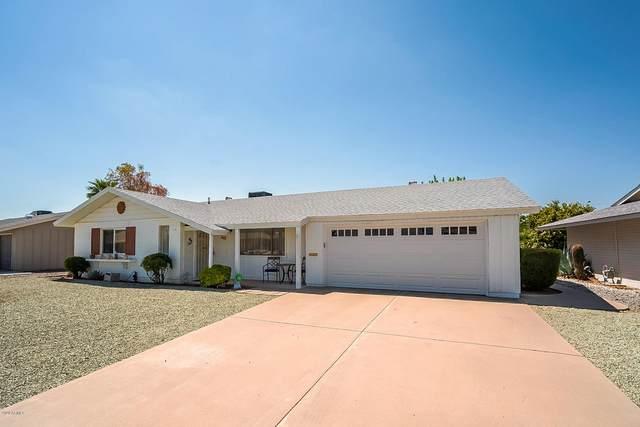 10221 W Pinehurst Drive, Sun City, AZ 85351 (MLS #6126978) :: Arizona 1 Real Estate Team