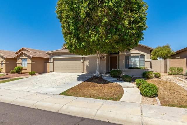6782 W Saddlehorn Road, Peoria, AZ 85383 (MLS #6126990) :: Howe Realty