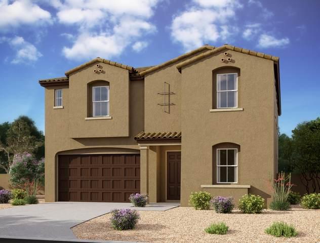 5537 W Stargazer Place, Laveen, AZ 85339 (MLS #6127049) :: Brett Tanner Home Selling Team