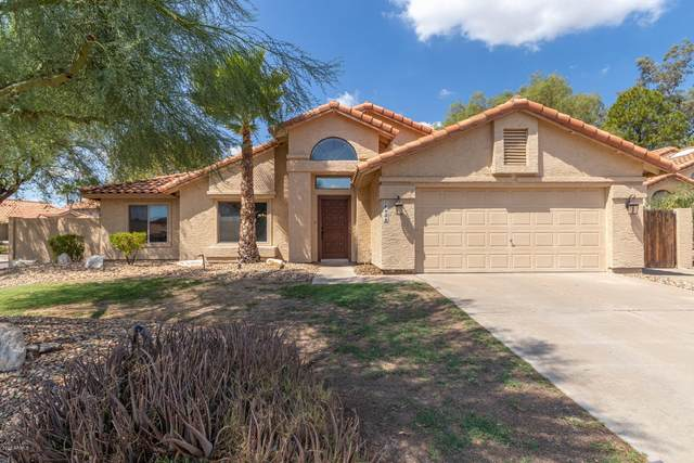 14438 S 35TH Street, Phoenix, AZ 85044 (MLS #6127122) :: CANAM Realty Group