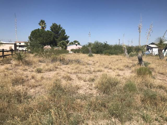 00 N Warren Rd Road, Benson, AZ 85602 (MLS #6127141) :: The W Group