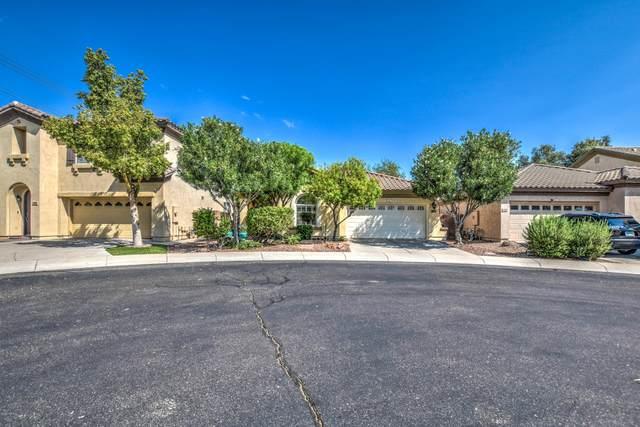 590 N Eucalyptus Place, Chandler, AZ 85225 (MLS #6127208) :: neXGen Real Estate