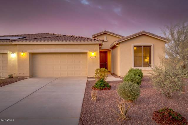 20345 N Lemon Drop Drive, Maricopa, AZ 85138 (MLS #6127241) :: The Property Partners at eXp Realty