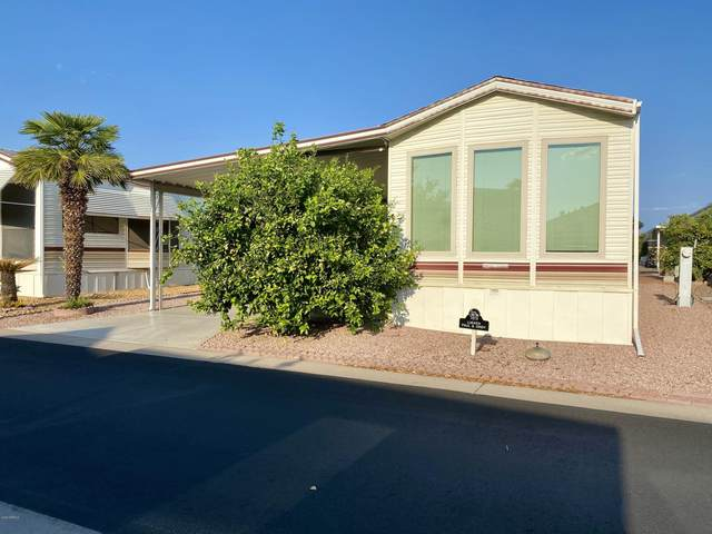 7750 E Broadway Road #189, Mesa, AZ 85208 (MLS #6127259) :: Conway Real Estate