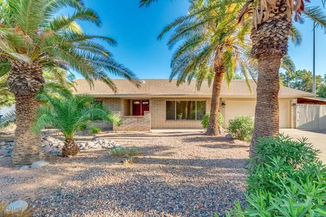 806 W Impala Circle, Mesa, AZ 85210 (MLS #6127265) :: Lucido Agency