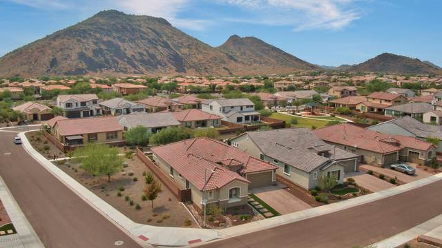 26012 N 52ND Avenue, Phoenix, AZ 85083 (MLS #6127512) :: Howe Realty