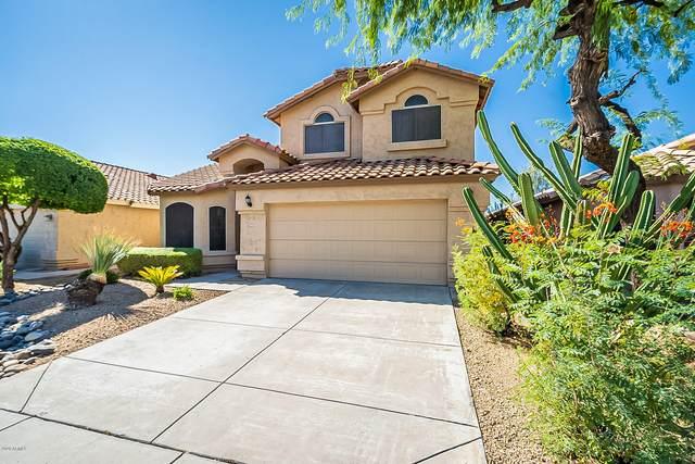2235 E Crest Lane, Phoenix, AZ 85024 (MLS #6127567) :: TIBBS Realty