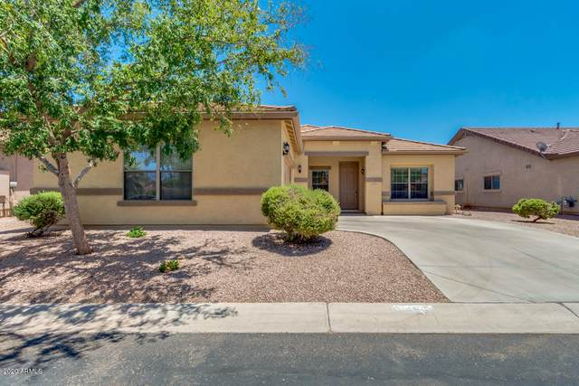 1493 S Cole Drive, Gilbert, AZ 85296 (MLS #6127592) :: My Home Group