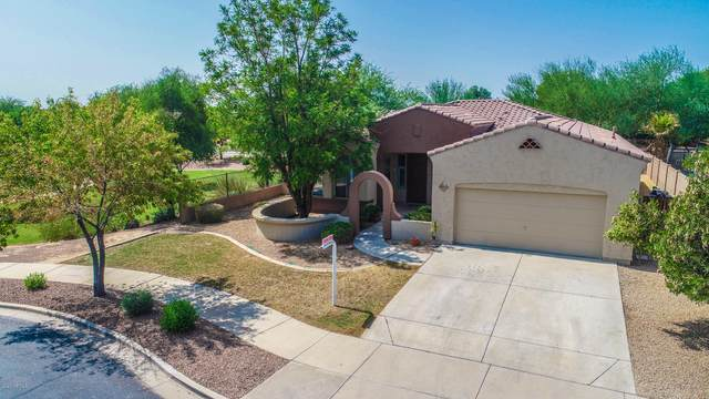 20858 S 184TH Place, Queen Creek, AZ 85142 (MLS #6127671) :: The Daniel Montez Real Estate Group