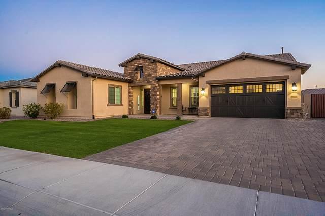 9221 W Los Gatos Drive, Peoria, AZ 85383 (MLS #6127695) :: Howe Realty