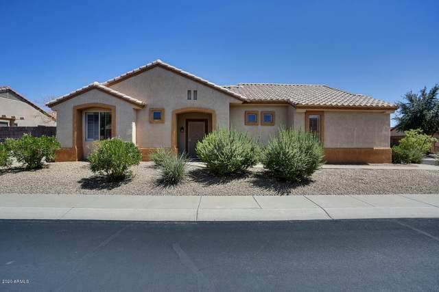 19525 N Bright Angel Lane, Surprise, AZ 85374 (MLS #6127901) :: Long Realty West Valley