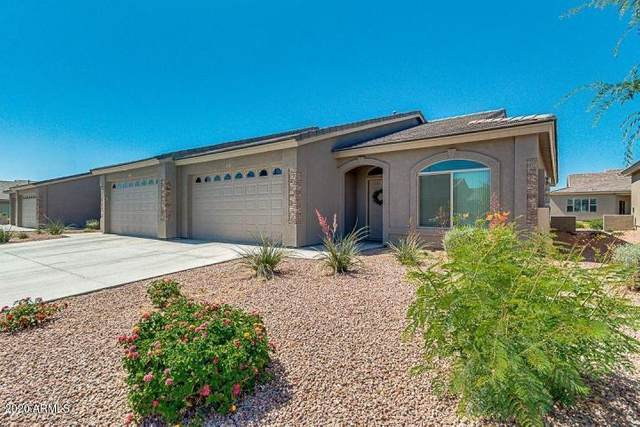 3117 S Signal Butte Road #542, Mesa, AZ 85212 (MLS #6128115) :: The Property Partners at eXp Realty