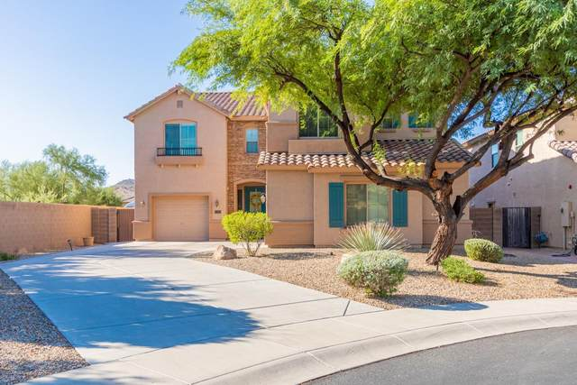 7101 W Nadine Way, Peoria, AZ 85383 (MLS #6128125) :: Nate Martinez Team