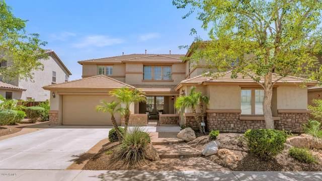 5637 W Molly Lane, Phoenix, AZ 85083 (MLS #6128148) :: REMAX Professionals