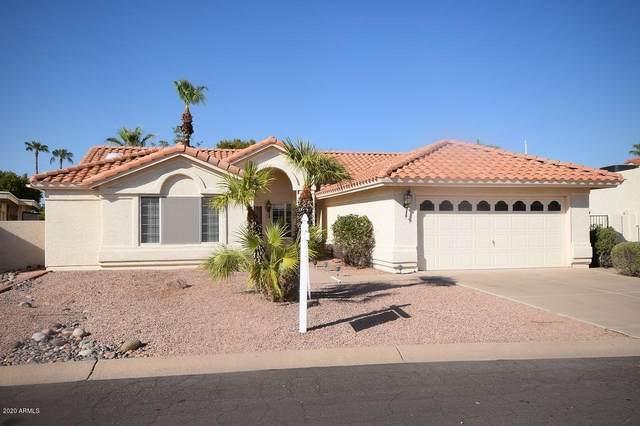 10442 E Twilight Drive, Sun Lakes, AZ 85248 (MLS #6128338) :: Arizona Home Group