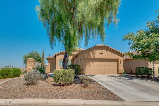 1464 W Danish Red Trail, San Tan Valley, AZ 85143 (MLS #6128417) :: Conway Real Estate