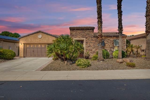 12464 W Pinnacle Vista Drive, Peoria, AZ 85383 (MLS #6128421) :: D & R Realty LLC