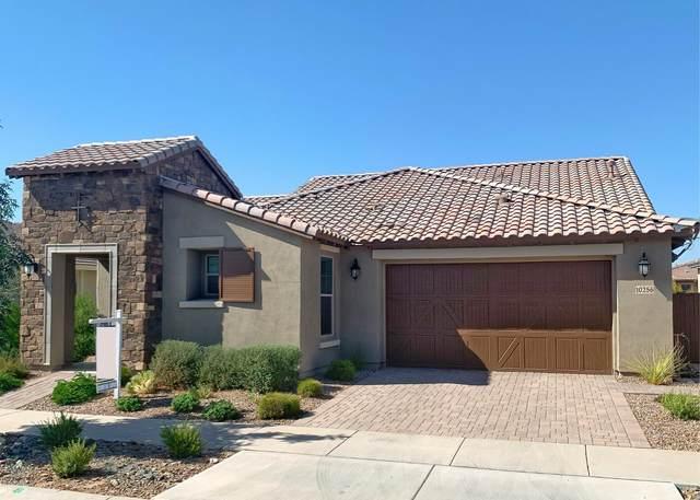 10256 E Thistle Avenue, Mesa, AZ 85212 (MLS #6128587) :: Balboa Realty