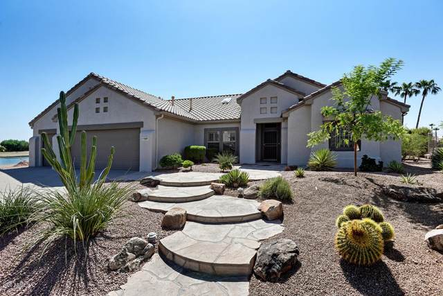 15801 W Joshua Tree Drive, Surprise, AZ 85374 (MLS #6128616) :: Nate Martinez Team