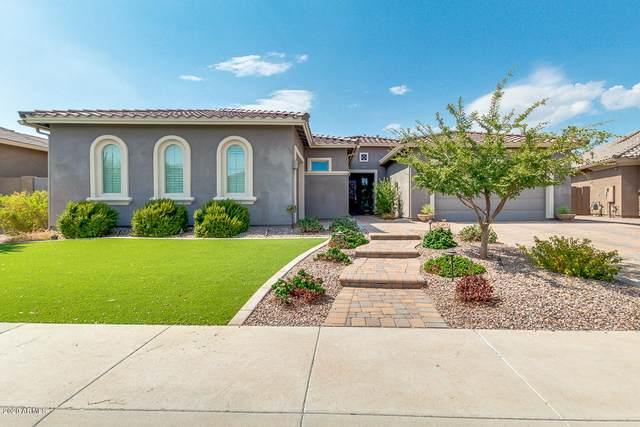 3140 S Pinnacle Drive, Chandler, AZ 85286 (MLS #6128707) :: Riddle Realty Group - Keller Williams Arizona Realty