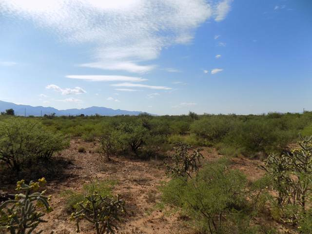 4916 S Ranch Road, Sierra Vista, AZ 85650 (MLS #6128769) :: The Riddle Group