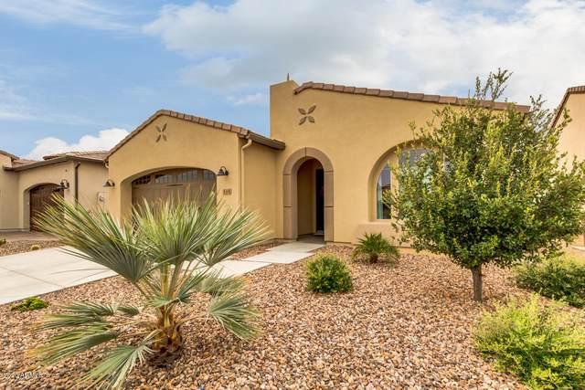 115 E Catalina Lane, San Tan Valley, AZ 85140 (#6128839) :: AZ Power Team | RE/MAX Results