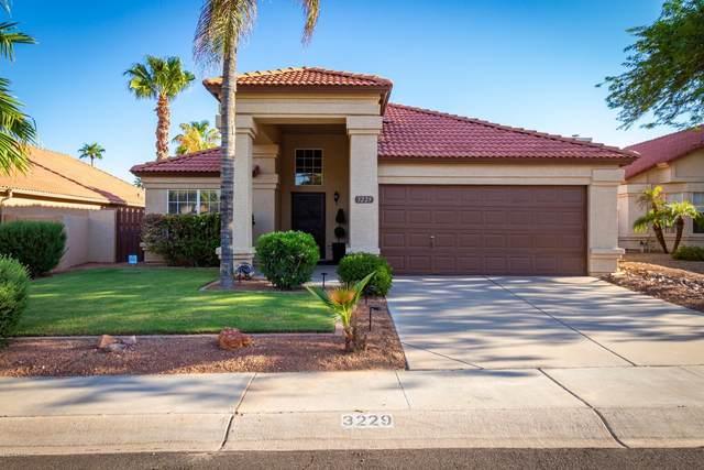 3229 E Hiddenview Drive, Phoenix, AZ 85048 (MLS #6128887) :: Lucido Agency