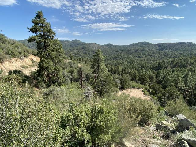 00 S Towers Mountain Road, Crown King, AZ 86343 (MLS #6128900) :: Conway Real Estate