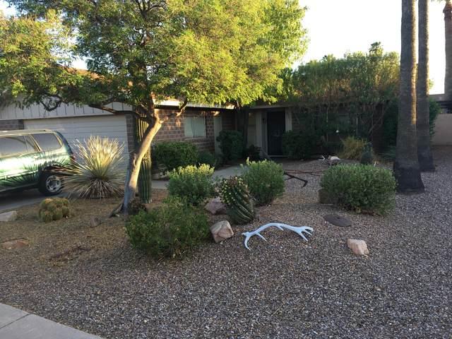8501 E Bonnie Rose Avenue, Scottsdale, AZ 85250 (MLS #6128930) :: Service First Realty