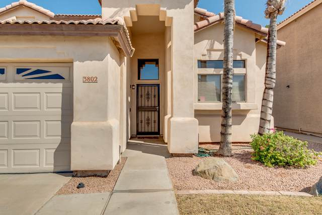 3802 W Park Avenue, Chandler, AZ 85226 (MLS #6128934) :: Brett Tanner Home Selling Team