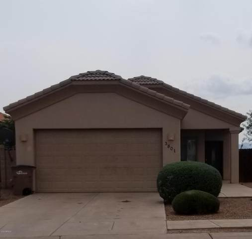 3801 Camino Del Rancho, Douglas, AZ 85607 (MLS #6128987) :: Midland Real Estate Alliance