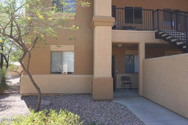 537 S Delaware Drive #137, Apache Junction, AZ 85120 (MLS #6129134) :: Conway Real Estate
