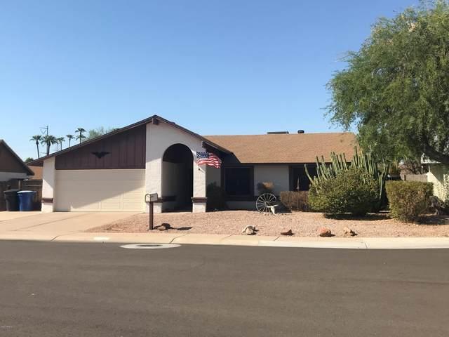 2804 W Newton Court, Chandler, AZ 85224 (MLS #6129291) :: The Daniel Montez Real Estate Group