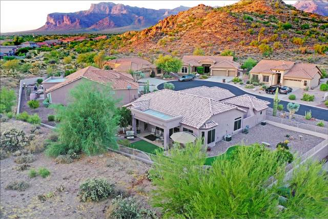 5148 S Red Yucca Lane, Gold Canyon, AZ 85118 (MLS #6129336) :: D & R Realty LLC
