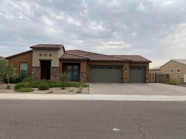 2613 W Moura Drive, Phoenix, AZ 85085 (MLS #6129354) :: The Laughton Team