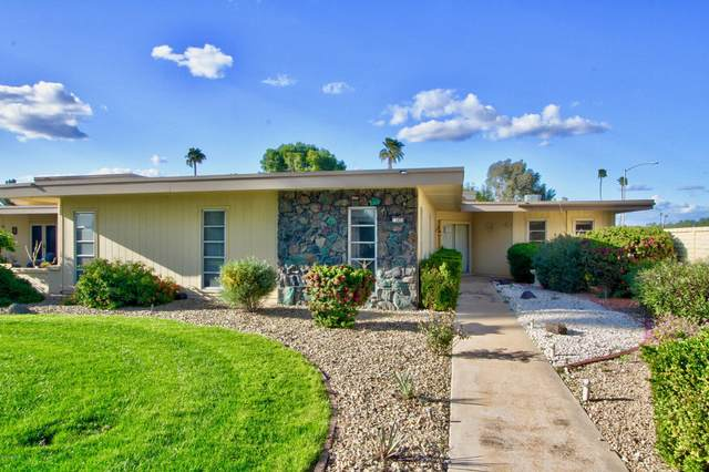 13451 N 107th Drive, Sun City, AZ 85351 (MLS #6129446) :: Nate Martinez Team