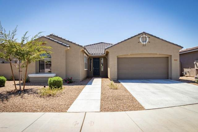 23051 E Camina Buena Vista, Queen Creek, AZ 85142 (MLS #6129604) :: Klaus Team Real Estate Solutions